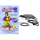 Aviator Bird Harness Petite - Xsmall - Small- Small