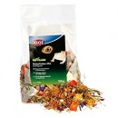 Trixie Natural Food Mixture for Bearded Dragons 100γρ